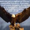 Esaie40.31-les-aigles