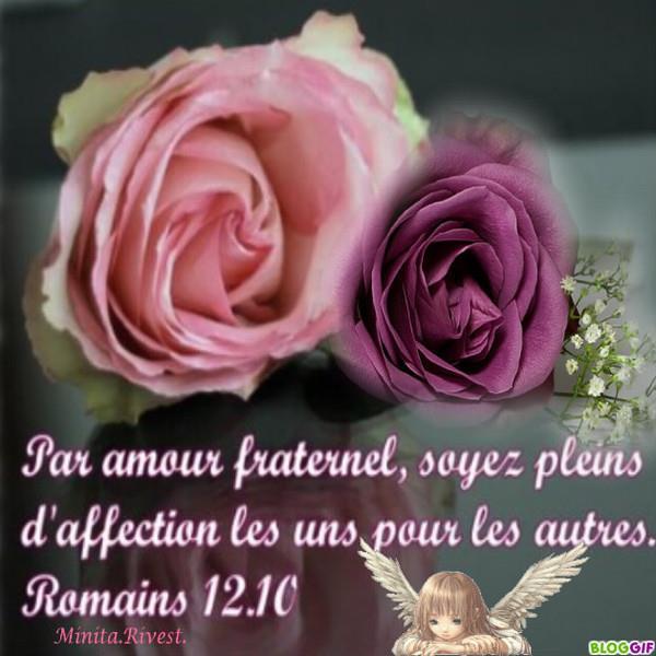Risultati immagini per l'amour bible